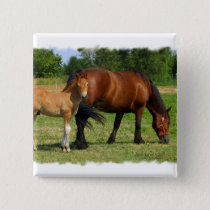 Grazing Horse Family Square Pin