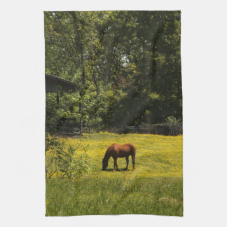 Grazing Horse Kitchen Towel