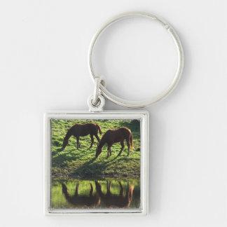 Grazing Horse Pair Keychain