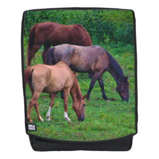 Grazing Horses Backpack - with swtichable face