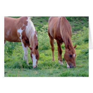 Grazing Horses Card