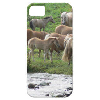 Grazing horses case