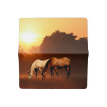 Grazing horses checkbook cover