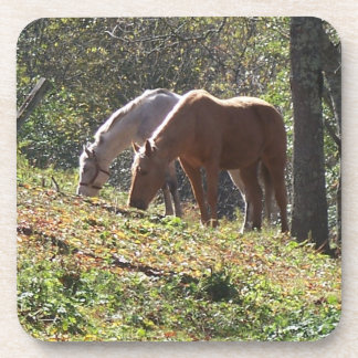 Grazing Horses Coaster