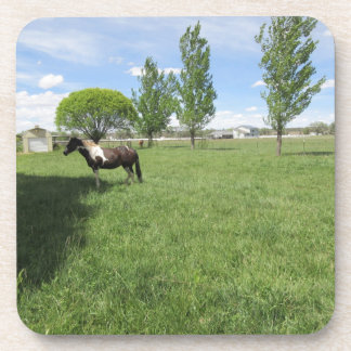 Grazing Horses Drink Coasters