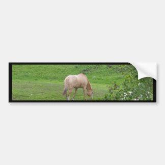 Grazing Horses I Car Bumper Sticker