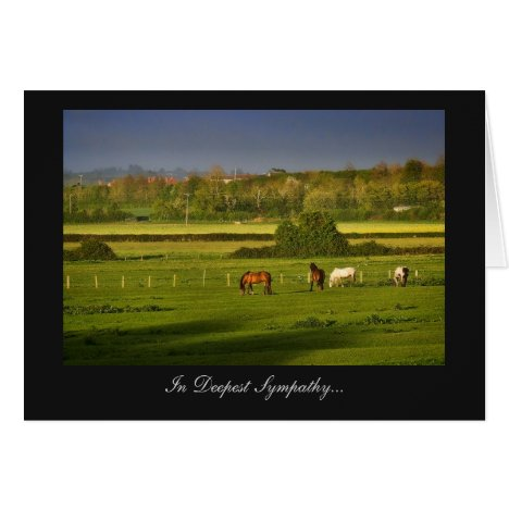 Grazing Horses / Ponies - In Deepest Sympathy Card