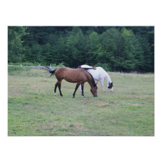 Grazing Horses Posters