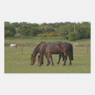 Grazing Horses Rectangular Sticker