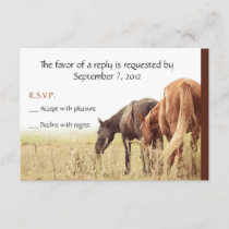 Grazing Horses - RSVP Cards