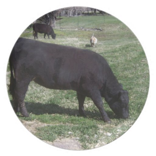 Grazing in May Plates