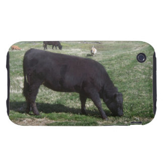 Grazing in May Tough iPhone 3 Case