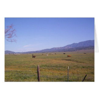 Grazing in the grass stationery note card