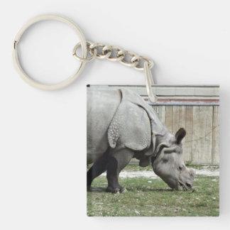 Grazing Indian Rhino Keychain