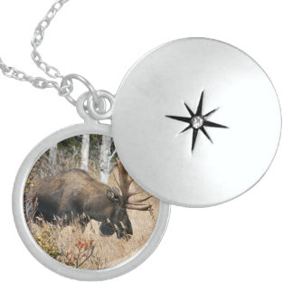Grazing Moose Locket Necklace