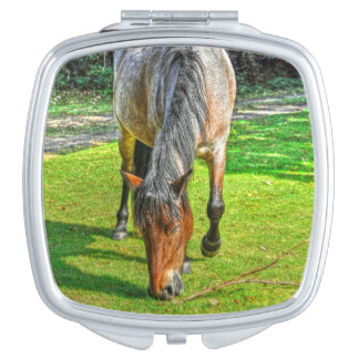Grazing New Forest Pony for Horse-lovers Compact Mirror