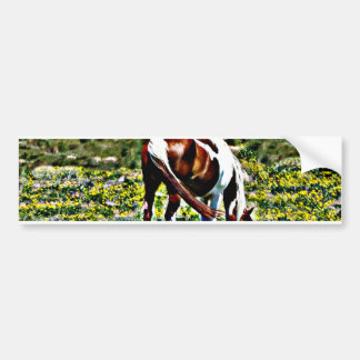 Grazing Paint Horse with yellow flowers Bumper Sticker