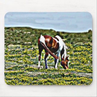 Grazing Paint Horse with yellow flowers Mouse Pad