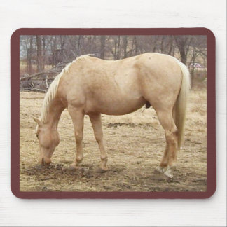 Grazing Palomino Horse Mouse Pad