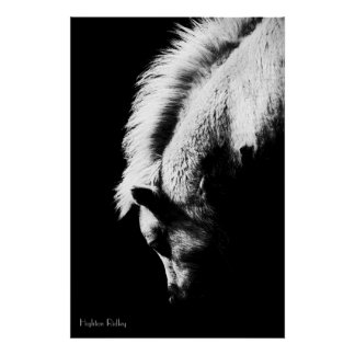 Grazing Pony, Fine Art Photograph Poster