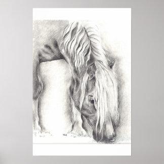 Grazing Pony Poster