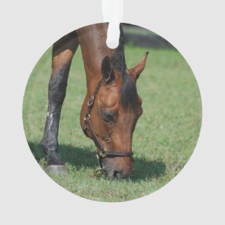 Grazing Quarter Horse