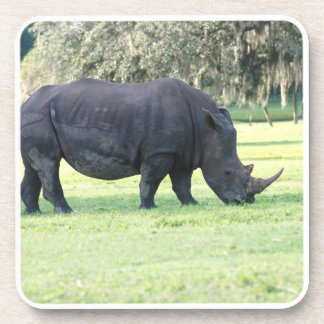 Grazing Rhino Set of Six Coasters