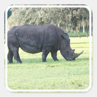 Grazing Rhino Stickers