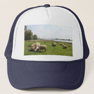Grazing Sheep by the Rhine Trucker Hat