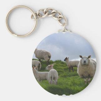 Grazing Sheep Keychain