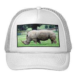 Grazing White Rhino  Baseball Hat