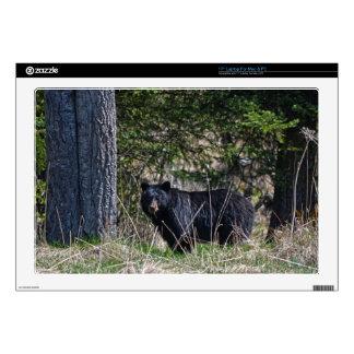 "Grazing Wild Black Bear Wildlife Photo Decal For 17"" Laptop"