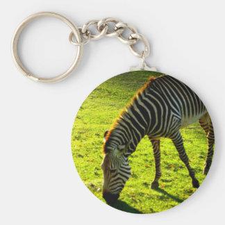 Grazing Zebra Basic Round Button Keychain