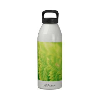 Grean leaf water bottle