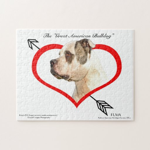 Great American Bulldog Puzzle