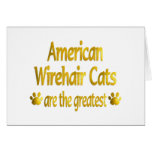 Great American Wirehair Greeting Card
