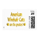 Great American Wirehair Stamp