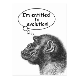 Great Ape Evolution Entitlement Postcard