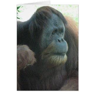 Great Ape Greeting Card