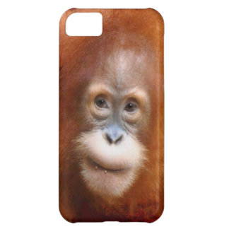 Great Ape Orangutan Wildlife Animal-Lovers Cover For iPhone 5C