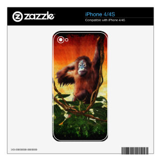 Great Ape Orangutan Wildlife Animal-Lovers Decal For iPhone 4