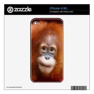 Great Ape Orangutan Wildlife Animal-Lovers Skin For The iPhone 4S