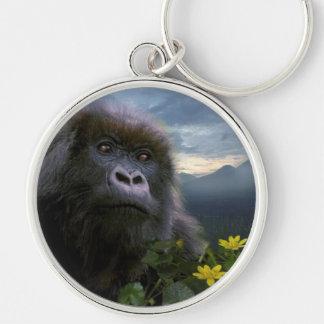 Great Apes Gorilla Primate Wildlife Keychain