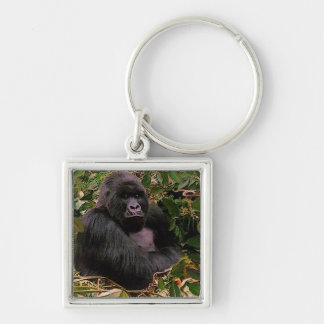 Great Apes Gorilla Primate Wildlife-lovers Silver-Colored Square Keychain
