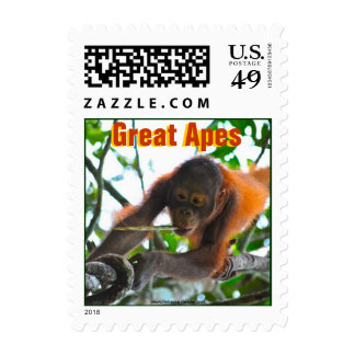 Great Apes Photography Postage Stamps