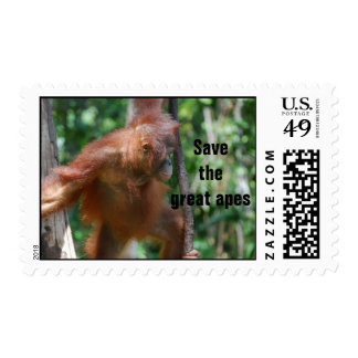 Great Apes postage stamp