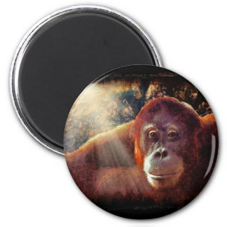 Great Apes Primate Wildlife-lovers Gift Refrigerator Magnet