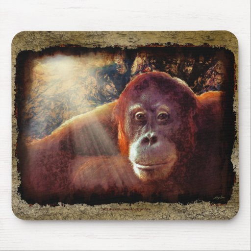 Great Apes Primate Wildlife-lovers Gift Mouse Pad