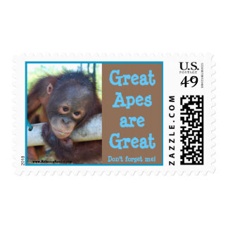 Great Apes & Rain Forest Daydreams Postage