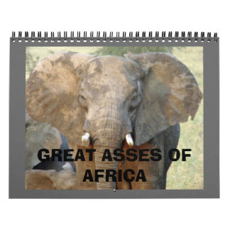 GREAT ASSES OF AFRICA WALL CALENDARS